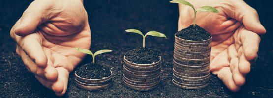 Sustentabilidade: mercado bom para administradores
