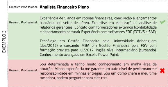 Resumo profissional analista financeiro